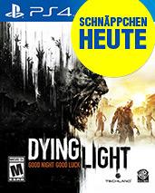 Dying Light Cover Packshot