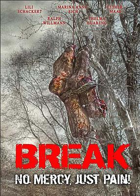 Einfach und sicher online bestellen: Break Limited 333 Edition Mediabook Cover D in Österreich kaufen.
