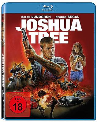 Einfach und sicher online bestellen: Joshua Tree in Österreich kaufen.