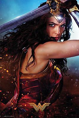 Einfach und sicher online bestellen: Wonder Woman Poster Defend (5) in Österreich kaufen.