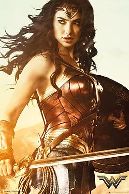 Einfach und sicher online bestellen: Wonder Woman Poster Sword (5) in Österreich kaufen.