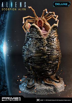 Einfach und sicher online bestellen: Aliens Statue 1/4 Scorpion Deluxe Version in Österreich kaufen.