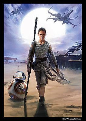 Einfach und sicher online bestellen: Star Wars: Destiny Art-Hüllen Rey in Österreich kaufen.
