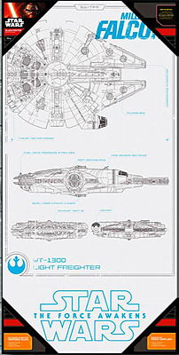 Einfach und sicher online bestellen: Star Wars Episode 7 Glas-Poster Millenium Falcon in Österreich kaufen.